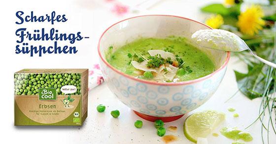 Frühling Erbsen Suppe Rezept Bio Cool